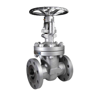 Gate Valves in Salem