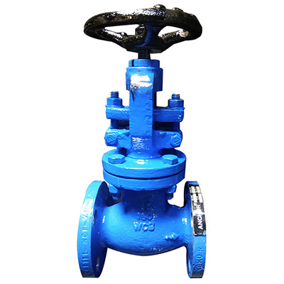 Globe Valves, Industrial Valves in Ahmedabad