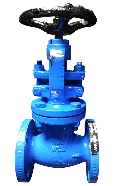 Top globe valve manufacturers in Ahmedabad, Flanged Valves Manufacturer